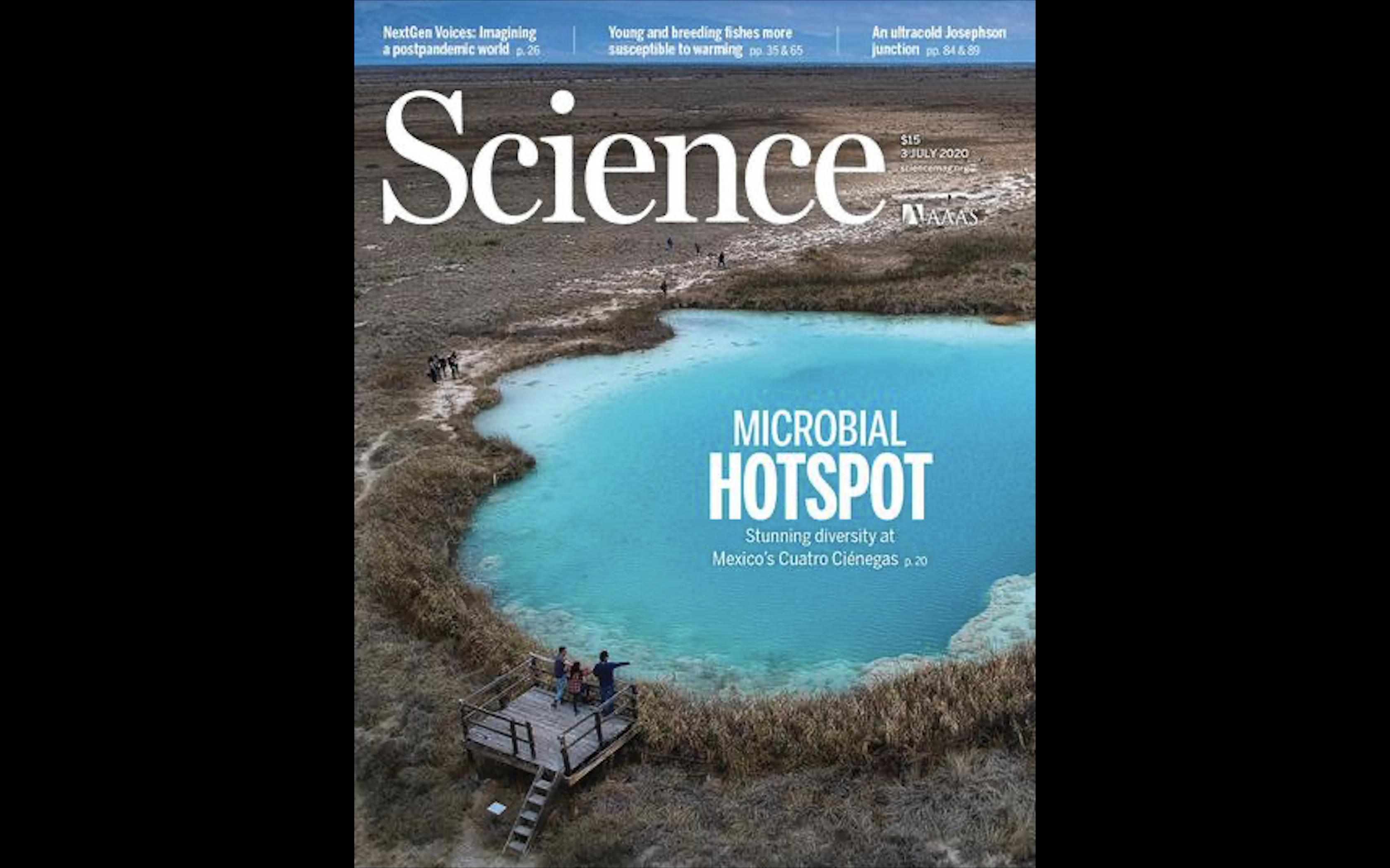 Журнал Science июль 2020: Главные материалы