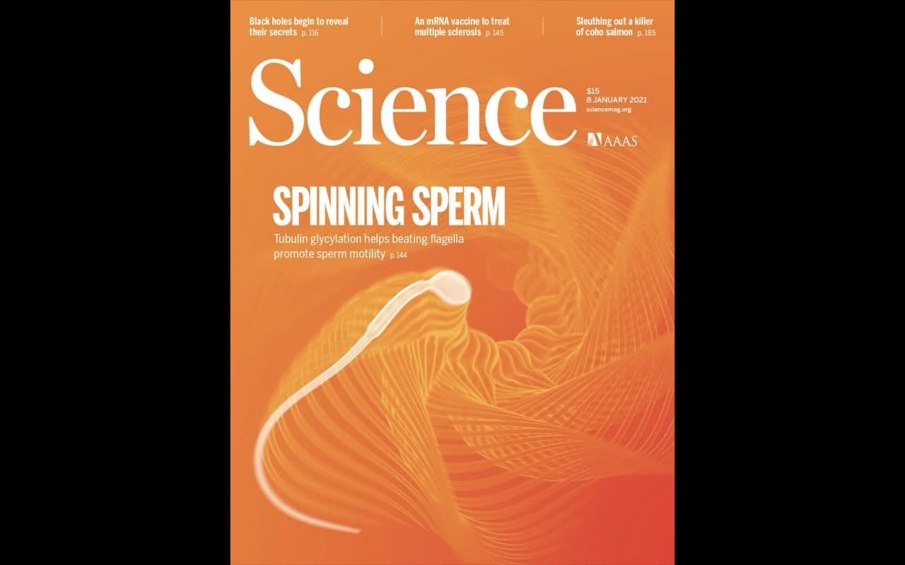 Журнал SCIENCE январь 2021: Главные материалы